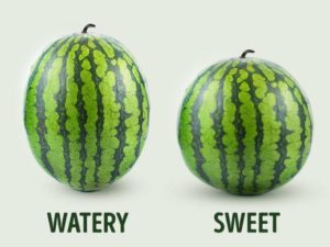 'Boy and girl Watermelons