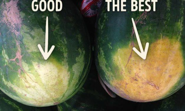 How to Choose the Finest (Ripe) Watermelon Ever
